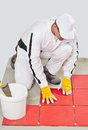 Worker with bucket adhesive apply red tiles Stock Photo