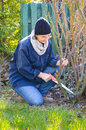 Worker in garden adult woman working using small hand saw for cleaning roses bush Royalty Free Stock Images