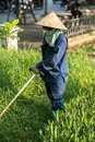 Worker mowing lawn with grass trimmer outdoors in Hanoi city, Vietnam Royalty Free Stock Photo