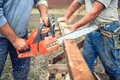 Workers, handymen cutting timber wood using mechanical chainsaw. Royalty Free Stock Photo