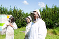 Workers with protective gear for working bees Stock Images