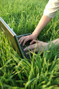 Working in the grass Royalty Free Stock Photo