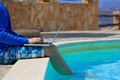 Working on laptop at the pool work holiday concept Royalty Free Stock Photo