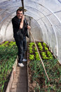 Working in real greenhouse Stock Photos
