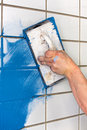 Workman applying blue grout to white tiles Royalty Free Stock Photo