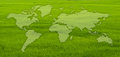 World map on grass field. Stock Photos