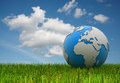World map on green grass d rendered image Royalty Free Stock Image
