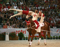 World vaulting championship Royalty Free Stock Photography