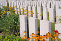 World war i cemetery flanders british in poelkapelle near ypres where over unknow fallen commonwealth soldiers are burried Royalty Free Stock Image