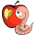 Worm and heart Stock Photography