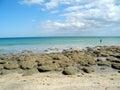 A Worm Reef Beach Royalty Free Stock Photos