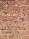 Worn brick ii color photo of old building with and peeling paint on red bricks Stock Images