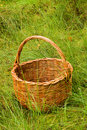 Woven basket in the grass Stock Images
