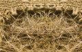 Woven sack material Royalty Free Stock Images