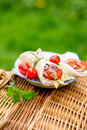 Wrap with tomatoes in the garden Royalty Free Stock Image