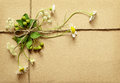 Wrapped box tied with daisy flowers and wild berries Royalty Free Stock Photo