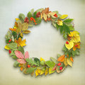 Wreath of autumn leaves on wooden background