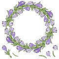 A wreath of crocuses. Vector illustration. Blue with green leave