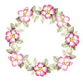 Wreath with flowers of wild rose. Watercolor illustration