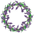 Wreath of Iris flowers vector frame