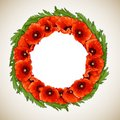 Wreath of poppies red floral round frame vector illustration Stock Photo