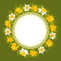 Wreath of spring flowers beautiful yellow and white daffodils Stock Image