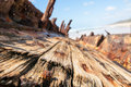 Wreck of the maheno fraser island teak decking on rusting hulk australia Royalty Free Stock Image
