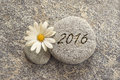 2016 written on a stone background Royalty Free Stock Photo