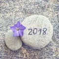 2018 written on a stone background with a periwinkle flower Royalty Free Stock Photo