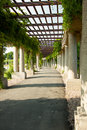 Wroclaw pergola in the sun poland Royalty Free Stock Image