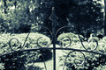 Wrought iron garden gate motif closeup top of detail in black sidelighted to show contours of design spider in center right swirl Stock Image