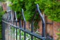 Wrought Iron Railings.