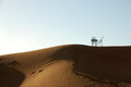 Wrought iron table and chairs on the top of sand dune Stock Photography