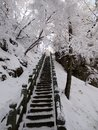The ancient stairway after snow