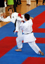 Wuko European Karate Championships Royalty Free Stock Images