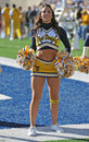 WVU Cheerleader Royalty Free Stock Images