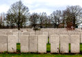 Wwi headstones of graves in lijssenhoek cemetery flanders fields great war at near poperinge belgium the soldiers is Royalty Free Stock Photography