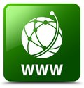 WWW (global network icon) green square button Royalty Free Stock Photo