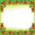 X-mas holly berry  frame Stock Image