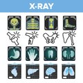 X-ray Icon Set Vector. Radiology Scan. Broken Human Bone. Medical Symbol. Fracture Structure. Health Hospital Medicine
