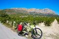 Xabia javea montgo vineyards biking mtb in alicante spain Royalty Free Stock Photos