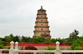 Xian Big Wild Goose Pagoda Royalty Free Stock Photo