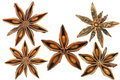 XL Star-Anise Royalty Free Stock Photo