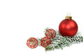Xmas ball red on fir branch Stock Image