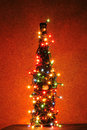 Xmas bottle in the red night christmas decorations Stock Photography