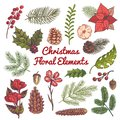Xmas floral set. Flower christmas decorations, watercolor elements with branches of vintage traditional plants and
