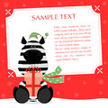 Xmas Zebra Royalty Free Stock Photo