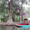 Xochimilco Lake