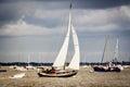 Yacht navigating the river under sail Royalty Free Stock Photo