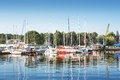 Yachts at pier in sunny morning Royalty Free Stock Photo